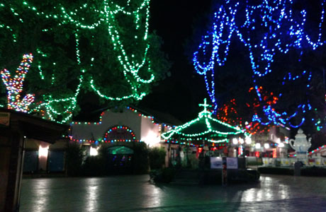 Six Flags Christmas in the park