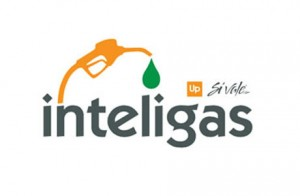 inteligas