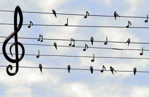 música evento corporativo