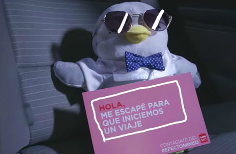 #EfectoMiniso, la exitosa campaña de marketing que inició con el escape de peluches