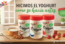 yogurts Yoplait Origen
