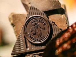 chocolate Cacaofruit Experience