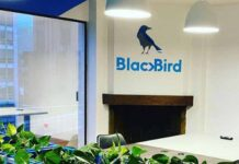 Blackbird experiential marketing