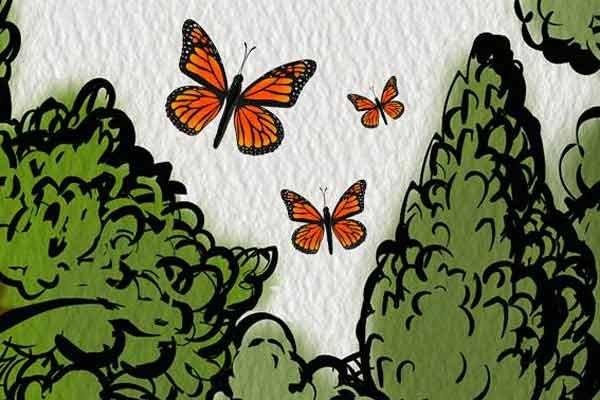 Air Wick protege mariposa monarca